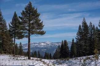 10721 Carson Range Road
