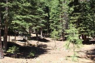 11768 Chamonix Road – SOLD!
