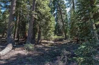1183 Regency Way, Tahoe Vista, CA