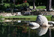 Enjoy Peace & Tranquility at the Pond
