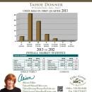 2013 Tahoe Donner Real Estate Stats